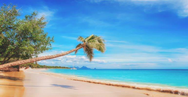 Caribbean beach and its inspiring blue ocean.